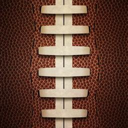 Dynasty Football - The Strategic Card Game