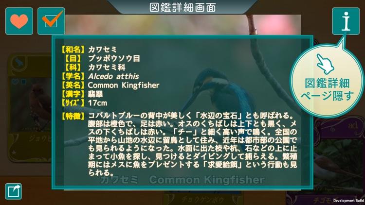 GPS動く野鳥図鑑400 screenshot-4
