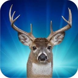 Deer Hunter Jungle Episode