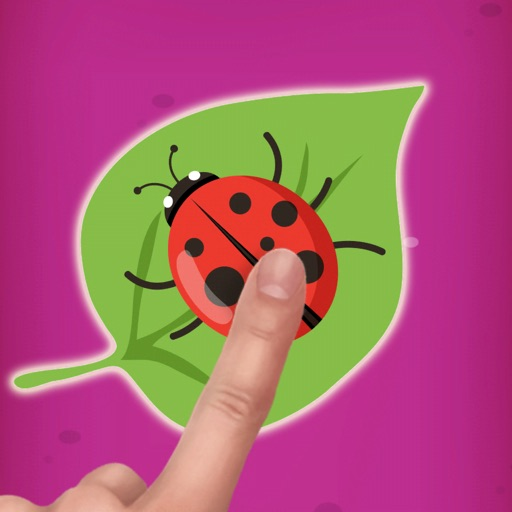 Bug Smasher Insect Game