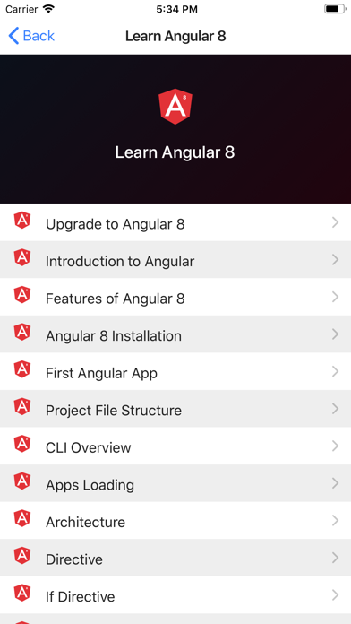 Development Guide for Angular screenshot 2
