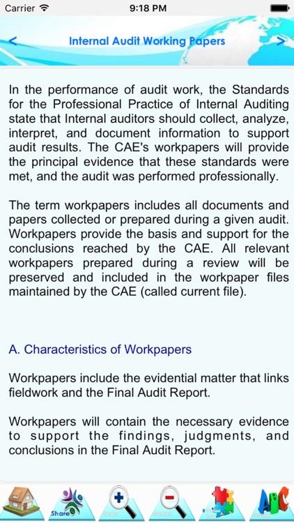 Internal Audit Manual screenshot-4
