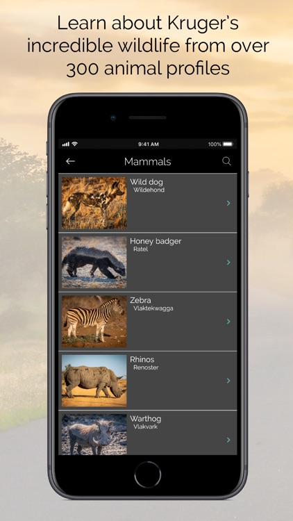 KrugerExplorer screenshot-3