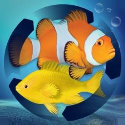 Fish Farm Merge