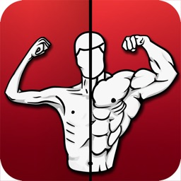 Home Workout - Exercises