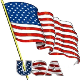 I Love The American Flag Icon