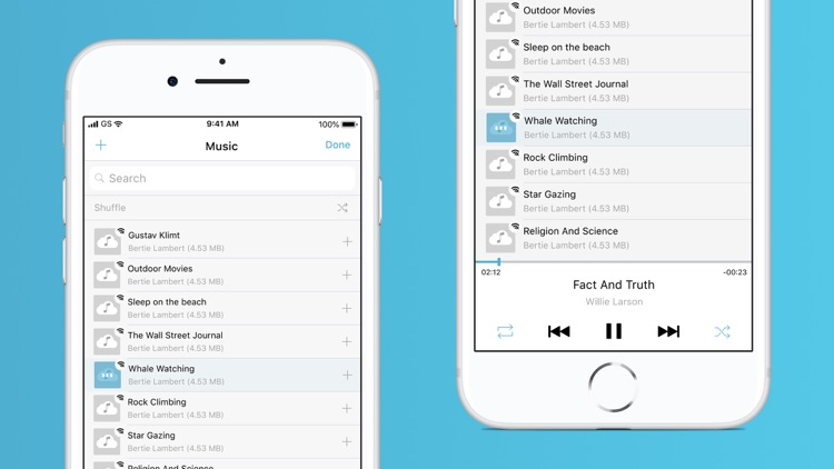 Music Cloud - offline player
