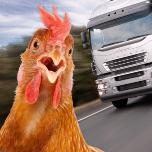 Chicken Challenge 3D