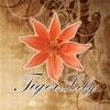Tiger Lily Beauty Salon