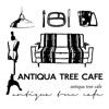 ANTIQUA TREE CAFE(アンティカツリーカフェ)