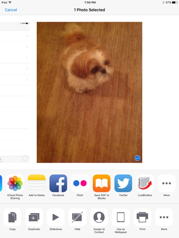 LiveBinders Screenshot 3