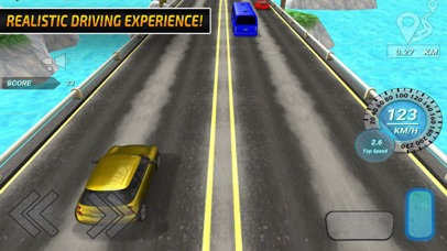 Top Racers: Crazy Speeds screenshot 2