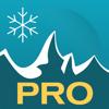 Schneemenschen GmbH - Sneeuwhoogte Ski App Pro kunstwerk