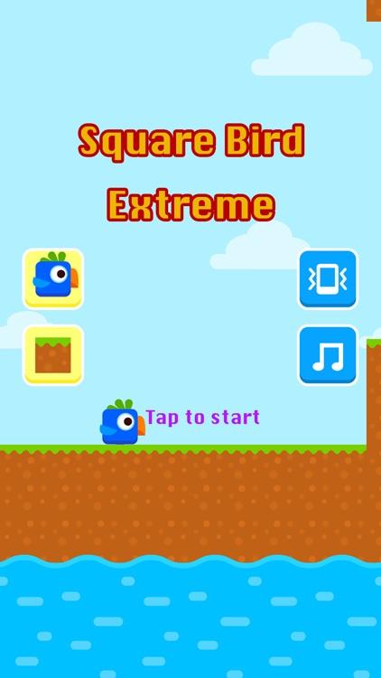 Square Bird Extreme
