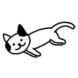 猫咪真的很可爱!