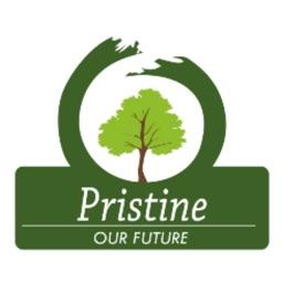Pristine Meadows