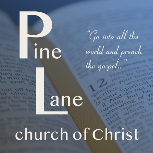 Pine Lane