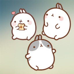 New Molang Stickers HD