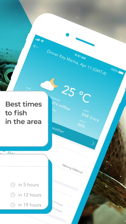 Fishing Forecast App: Fishbox