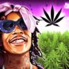 Wiz Khalifa's Weed Farm - Metamoki Inc.