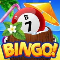 Codes for BINGO! Tropical Beach World Hack