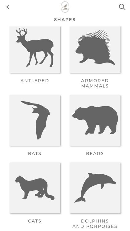 Fieldstone Guide: Mammals screenshot-5
