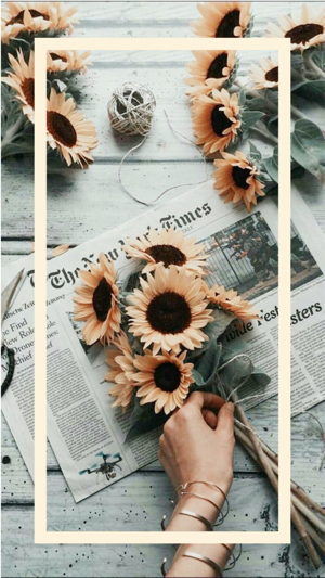 Unduh 42 Koleksi Wallpaper Iphone Aesthetic HD Terbaru