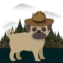 Pugs in Hats