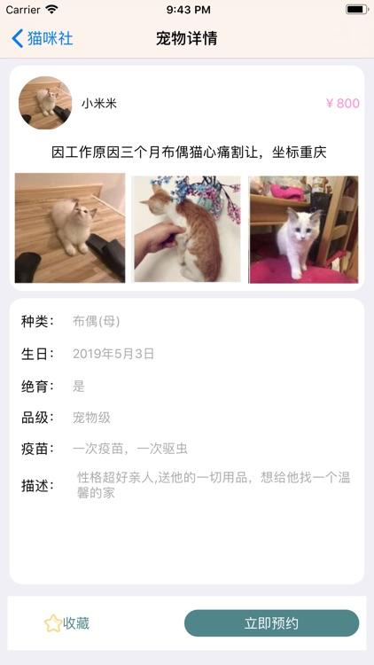 猫咪社 screenshot-1