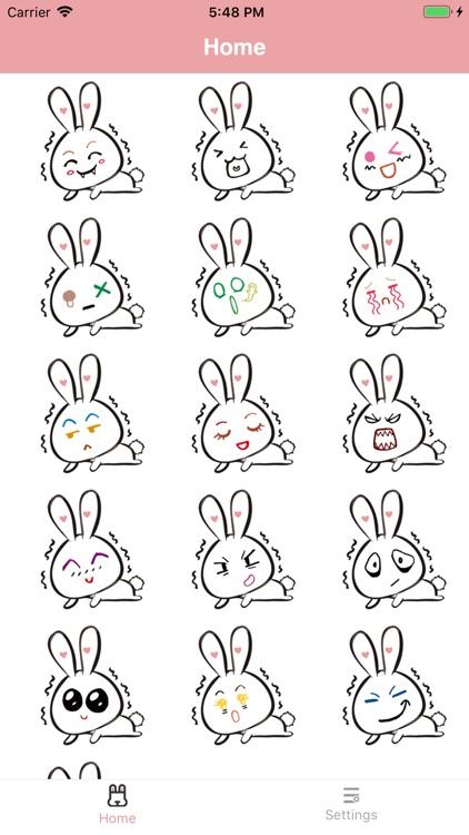 Big face rabbit