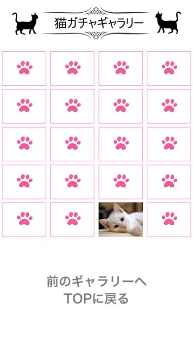 猫天気〜天気予報&可愛い猫写真〜のおすすめ画像2
