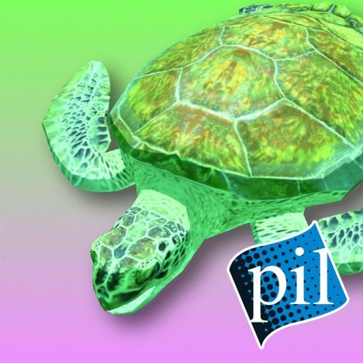 PI VR Coral Reefs