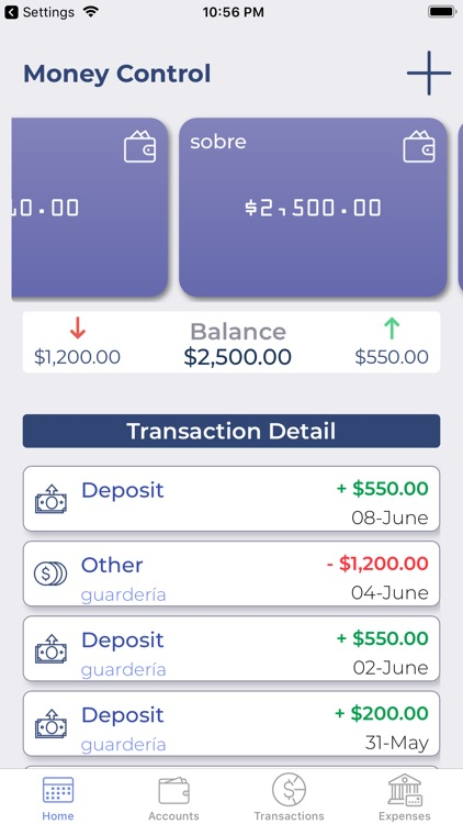 Money Tracker screenshot-4