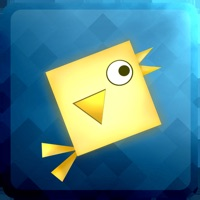 Codes for Geometry: Square Birds Hack