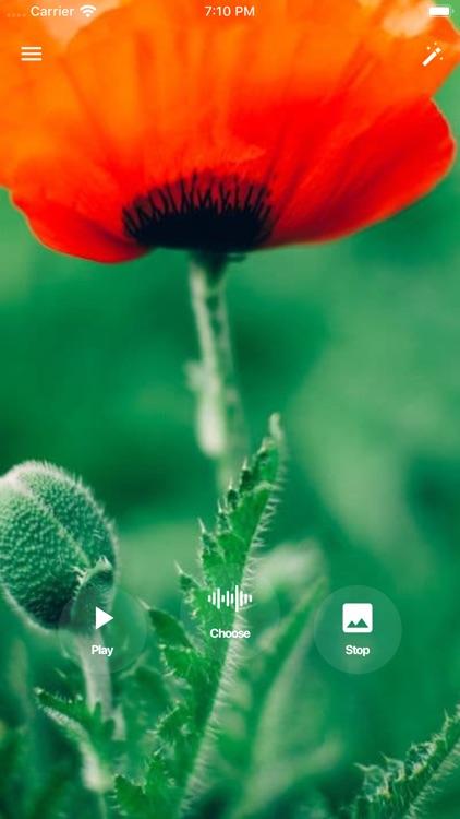 Relax and meditation music screenshot-3