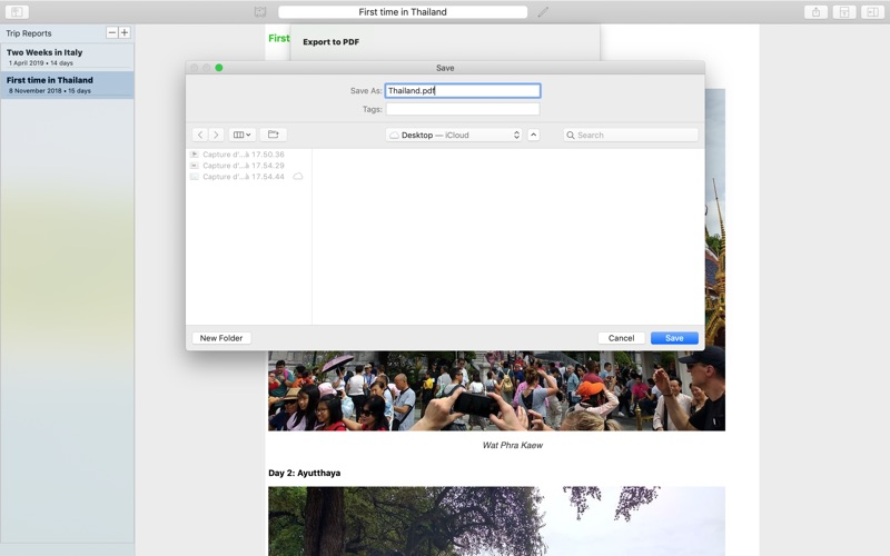 My Travels Reports скриншот программы 4