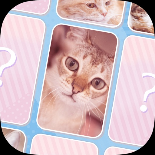 可愛い猫のメモリーマッチパズル!