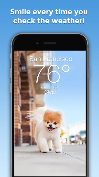 Boo Weather: Pomeranian Puppyのおすすめ画像1