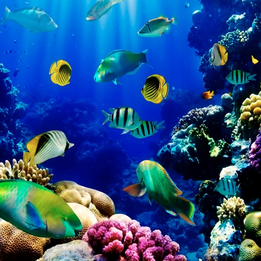 Aquarium Live Wallpapers