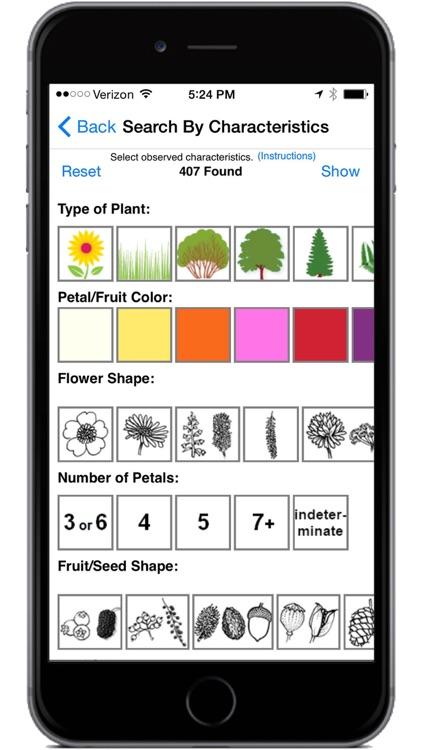 Flora of Yellowstone screenshot-4