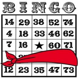 Blindfold Bingo