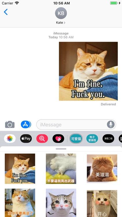 可爱猫 screenshot-3