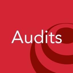 AssessNET Audits
