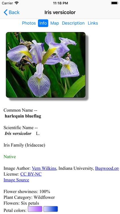 New England Wildflowers screenshot-3