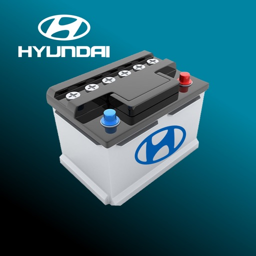 Hyundai Batteries Guide