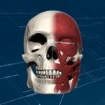 Face 3D Plus