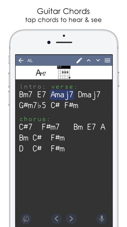 Musicians Notebook & Recorder screenshot-6