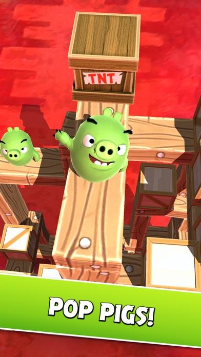 Angry Birds AR: Isle of Pigs screenshot 3