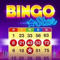 Bingo Star - Bingo Games Hack Online Generator  img