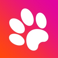 Codes for Game for cats! Hack